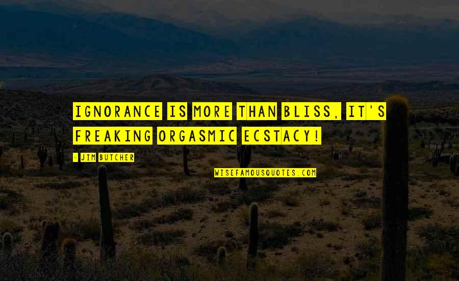 Ignorance And Bliss Quotes By Jim Butcher: Ignorance is more than bliss, it's freaking orgasmic