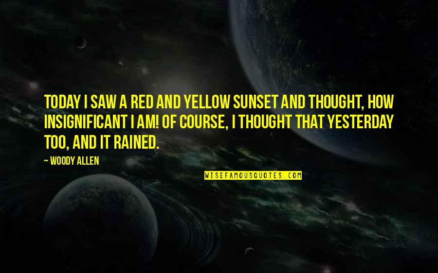 Iife Quotes By Woody Allen: Today I saw a red and yellow sunset