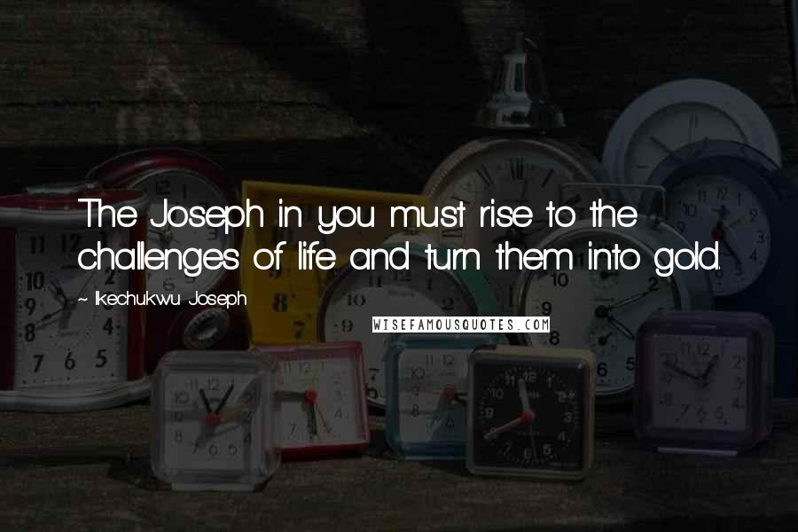 Ikechukwu Joseph quotes: The Joseph in you must rise to the challenges of life and turn them into gold.