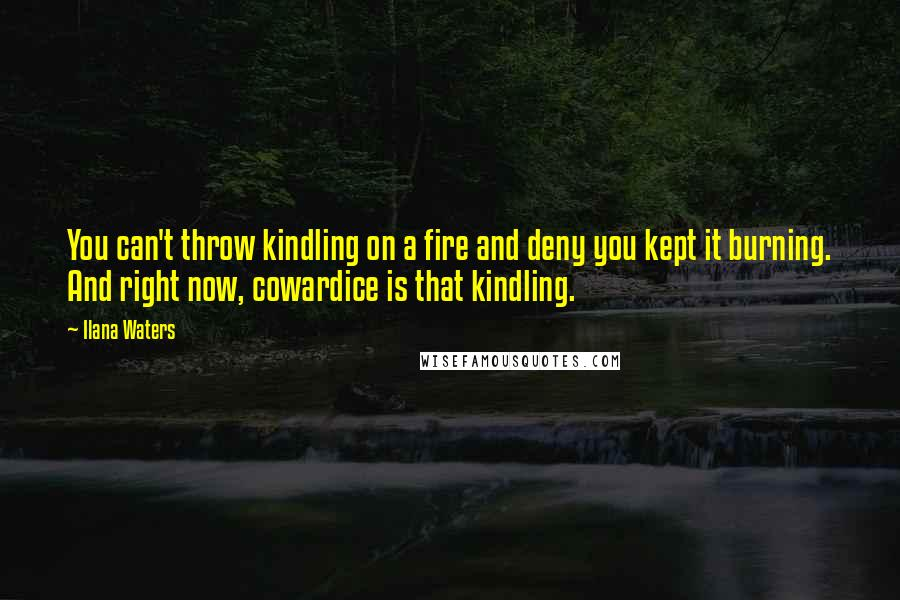 Ilana Waters quotes: You can't throw kindling on a fire and deny you kept it burning. And right now, cowardice is that kindling.