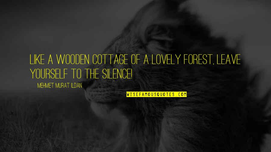 Ildan Quotes By Mehmet Murat Ildan: Like a wooden cottage of a lovely forest,