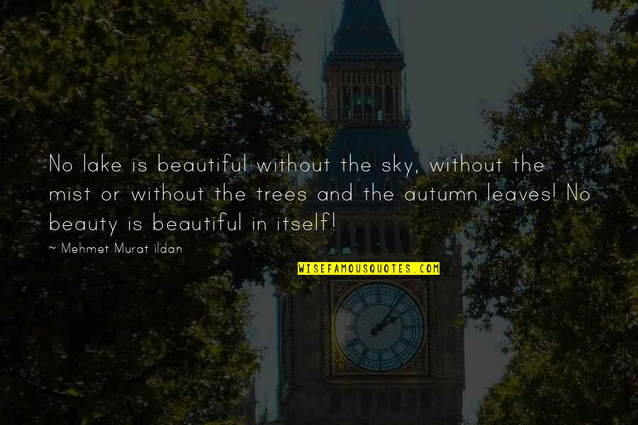 Ildan Quotes By Mehmet Murat Ildan: No lake is beautiful without the sky, without