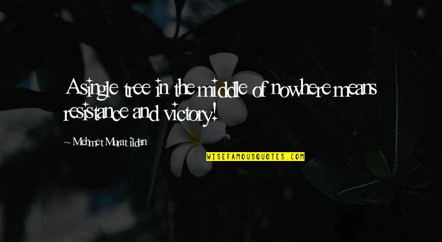 Ildan Quotes By Mehmet Murat Ildan: A single tree in the middle of nowhere