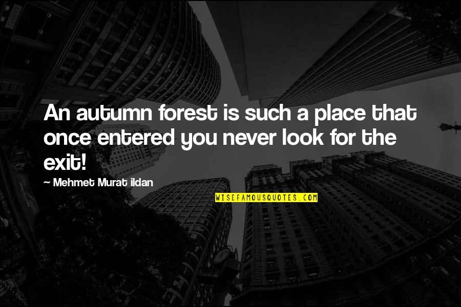 Ildan Quotes By Mehmet Murat Ildan: An autumn forest is such a place that