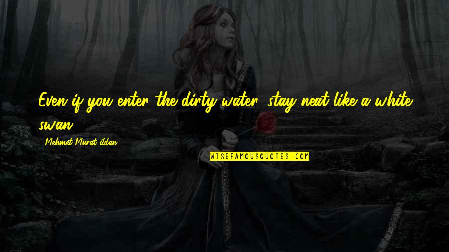 Ildan Quotes By Mehmet Murat Ildan: Even if you enter the dirty water, stay