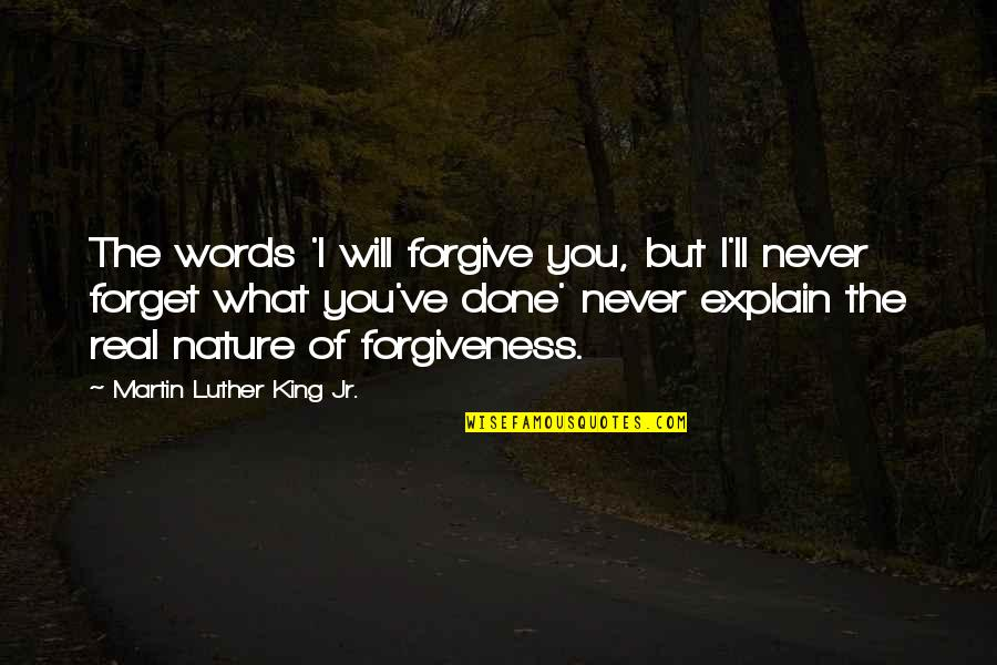 I'll Never Forget Our Love Quotes By Martin Luther King Jr.: The words 'I will forgive you, but I'll