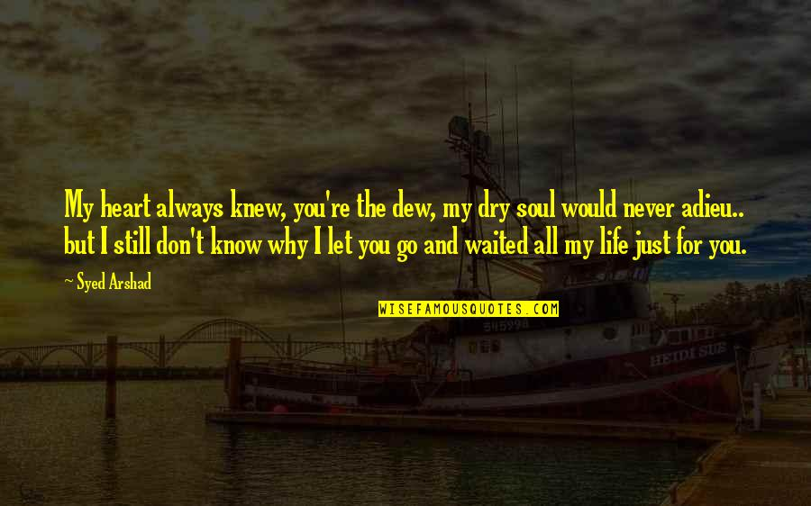 I'll Never Let You Go Quotes By Syed Arshad: My heart always knew, you're the dew, my