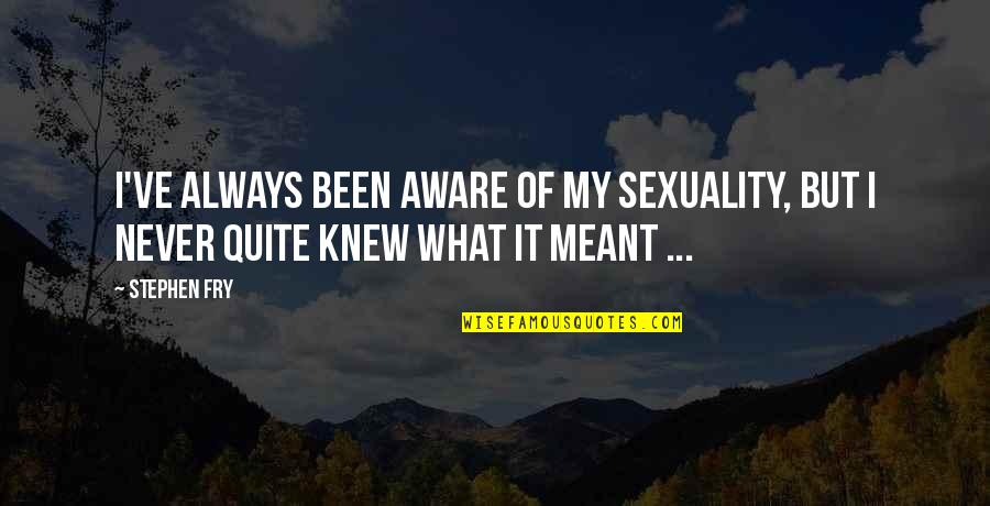 I'll Never Quit Quotes By Stephen Fry: I've always been aware of my sexuality, but