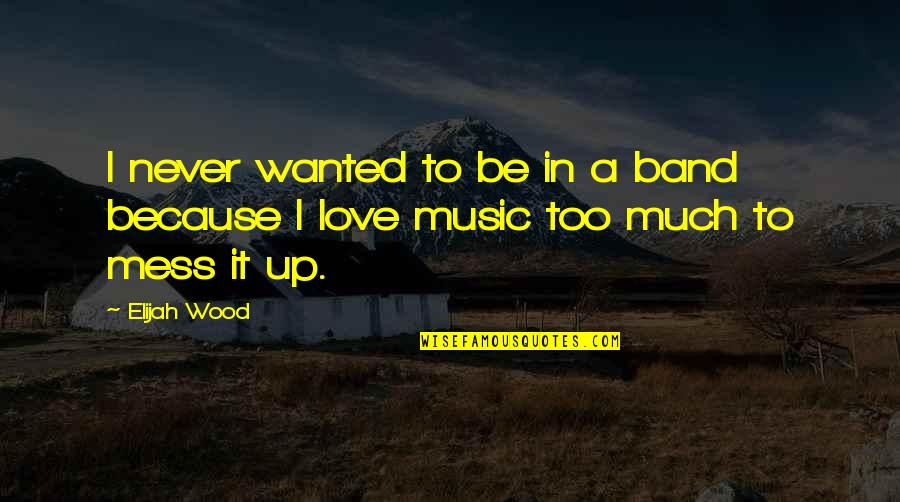 I'm A Mess Up Quotes By Elijah Wood: I never wanted to be in a band