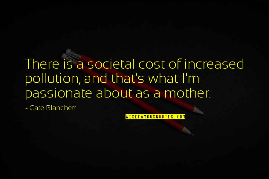 I'm A Mother Quotes By Cate Blanchett: There is a societal cost of increased pollution,