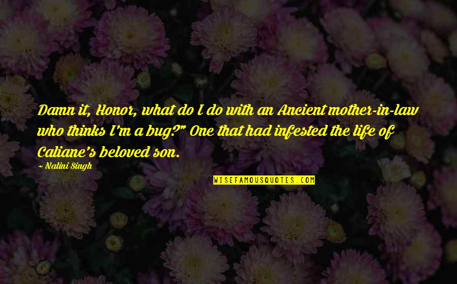 I'm A Mother Quotes By Nalini Singh: Damn it, Honor, what do I do with