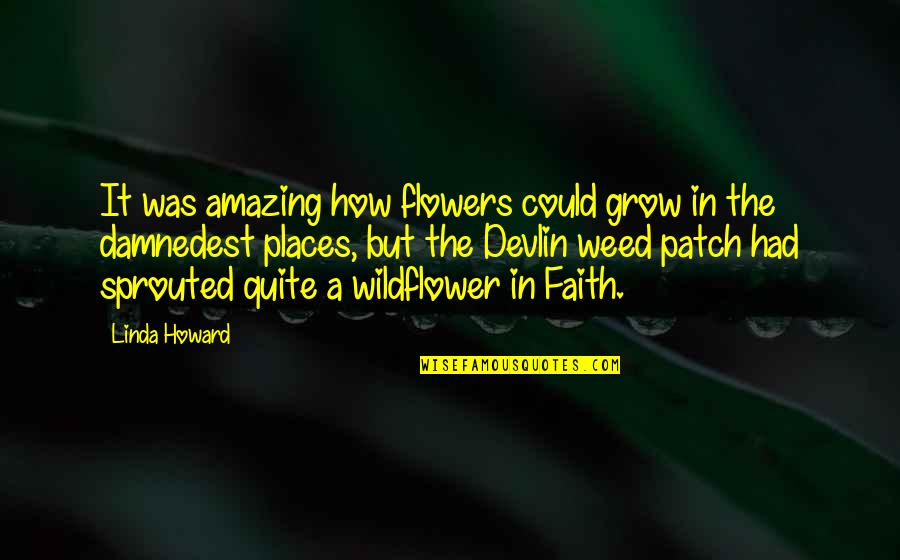 I'm A Wildflower Quotes By Linda Howard: It was amazing how flowers could grow in