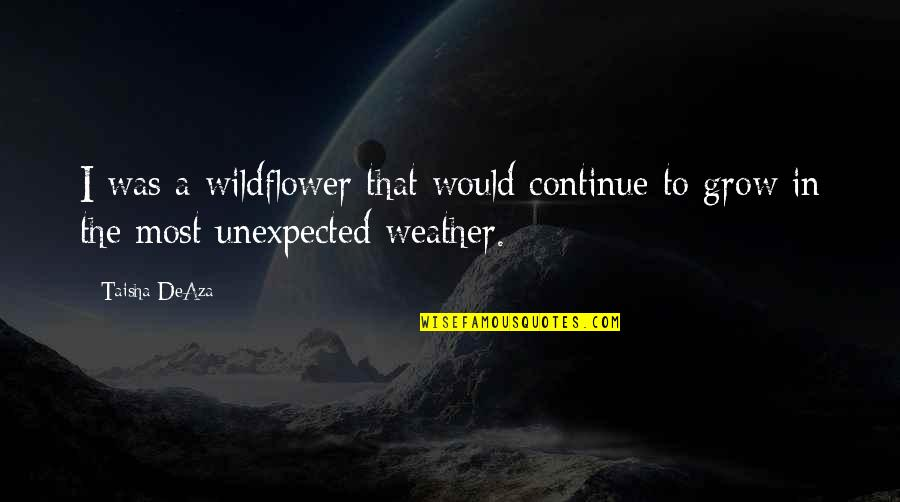 I'm A Wildflower Quotes By Taisha DeAza: I was a wildflower that would continue to