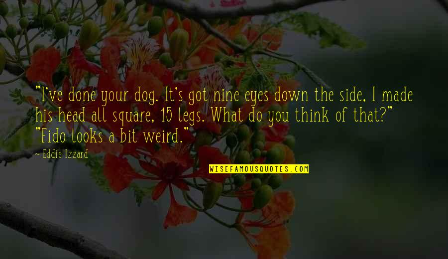"""I'm Done Funny Quotes By Eddie Izzard: """"I've done your dog. It's got nine eyes"""