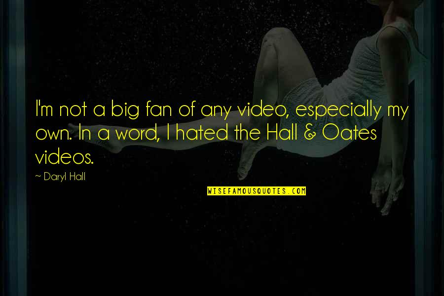 I'm Hated Quotes By Daryl Hall: I'm not a big fan of any video,