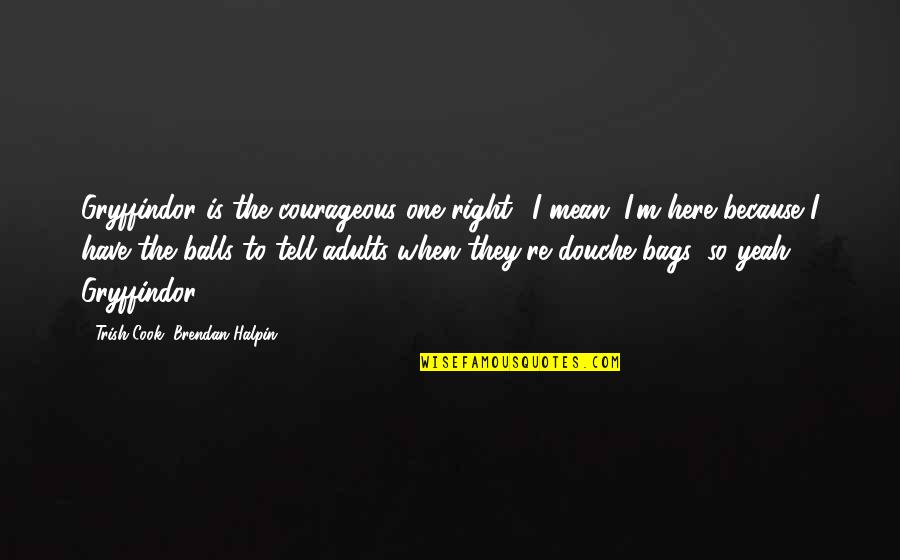 I'm Here Quotes By Trish Cook, Brendan Halpin: Gryffindor is the courageous one right? I mean,