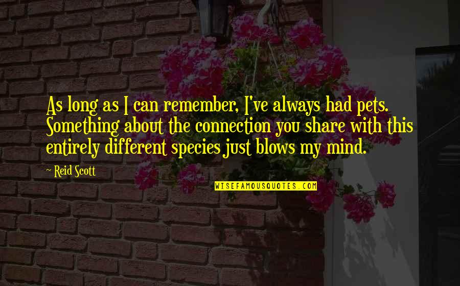I'm Just Different Quotes By Reid Scott: As long as I can remember, I've always