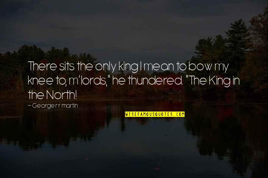 I'm Mean Quotes By George R R Martin: There sits the only king I mean to