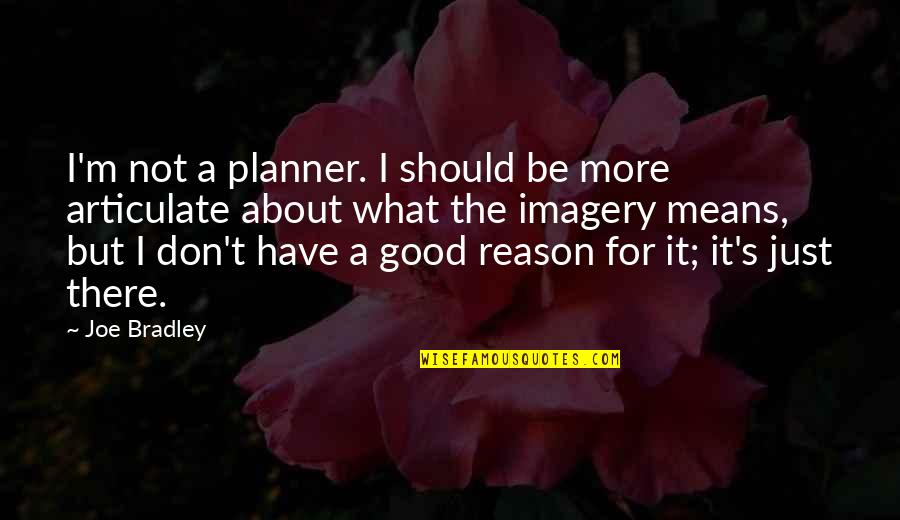 I'm Mean Quotes By Joe Bradley: I'm not a planner. I should be more
