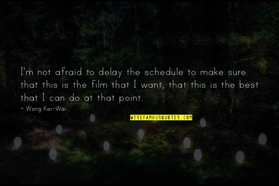 I'm Not The Best Quotes By Wong Kar-Wai: I'm not afraid to delay the schedule to