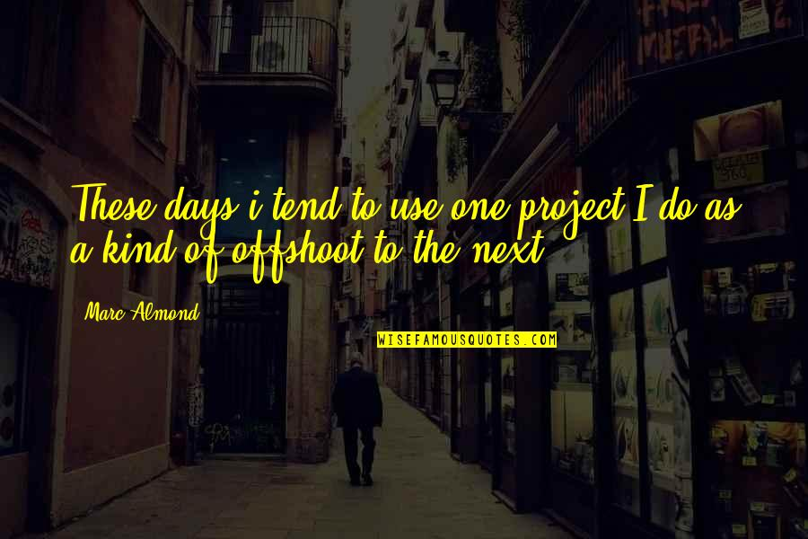 I'm One Of A Kind Quotes By Marc Almond: These days i tend to use one project