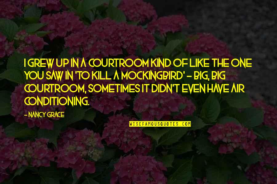 I'm One Of A Kind Quotes By Nancy Grace: I grew up in a courtroom kind of