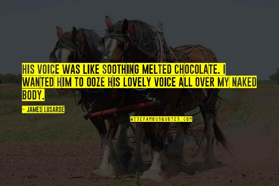 I'm Over Him Quotes By James Lusarde: His voice was like soothing melted chocolate. I