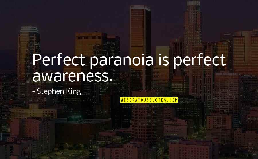 I'm Perfect Without You Quotes By Stephen King: Perfect paranoia is perfect awareness.