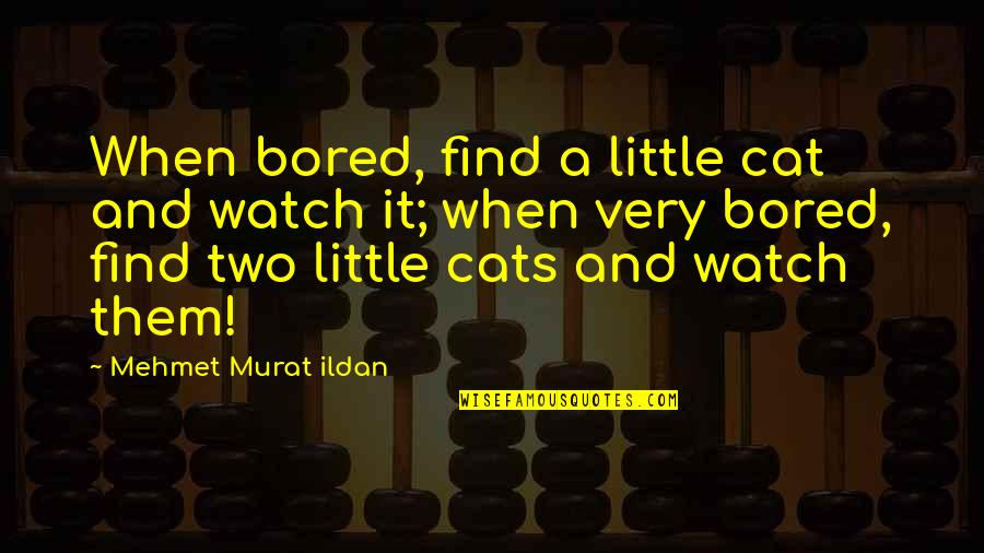I'm So Bored That Quotes By Mehmet Murat Ildan: When bored, find a little cat and watch