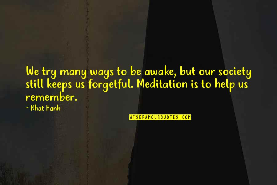 I'm Still Awake Quotes By Nhat Hanh: We try many ways to be awake, but