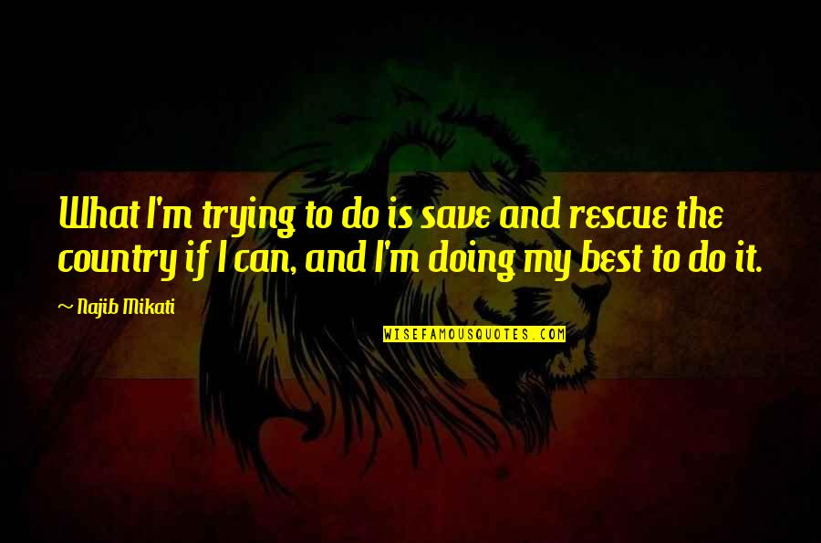 I'm The Best Quotes By Najib Mikati: What I'm trying to do is save and