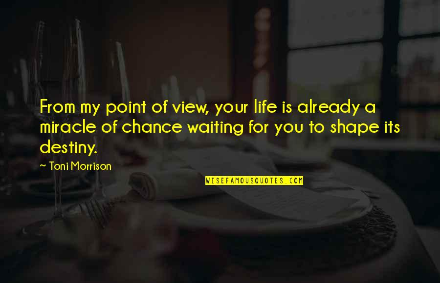 I'm Waiting For A Miracle Quotes By Toni Morrison: From my point of view, your life is