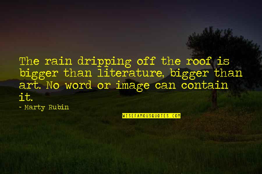 Image And Reality Quotes By Marty Rubin: The rain dripping off the roof is bigger