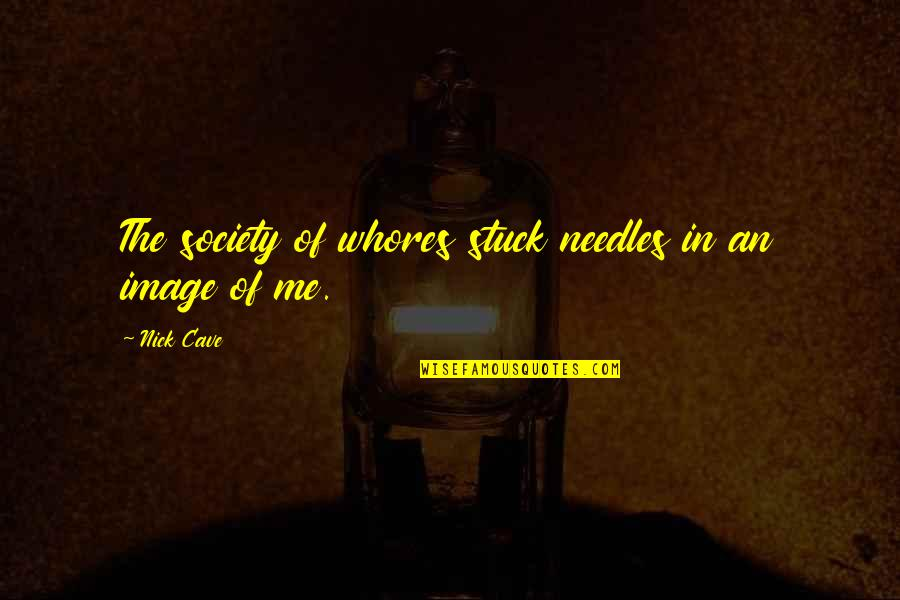 Image And Reality Quotes By Nick Cave: The society of whores stuck needles in an