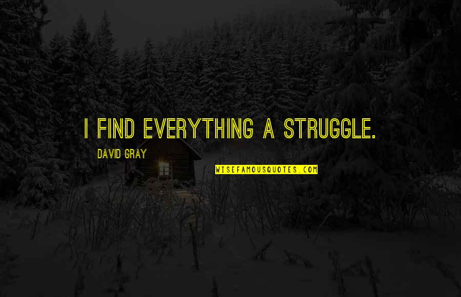 Images Of Hater Quotes By David Gray: I find everything a struggle.