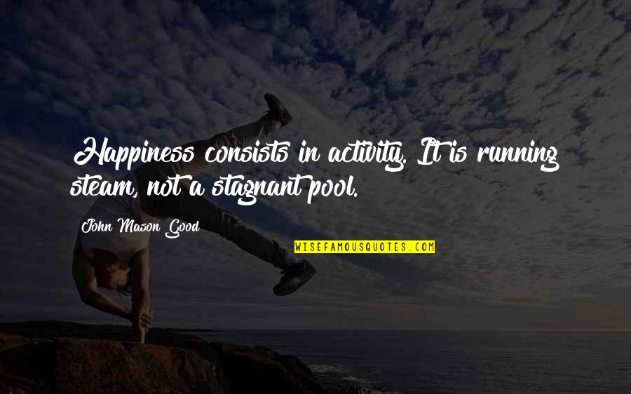 Imaginary Haters Quotes By John Mason Good: Happiness consists in activity. It is running steam,