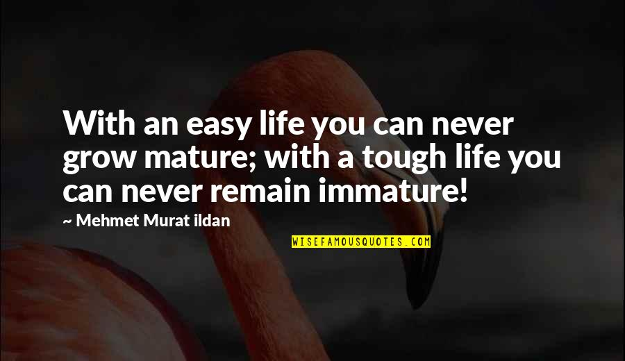 Immature And Mature Quotes By Mehmet Murat Ildan: With an easy life you can never grow