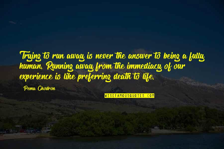 Immediacy Quotes By Pema Chodron: Trying to run away is never the answer