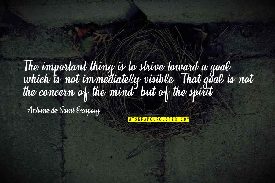 Immediately Quotes By Antoine De Saint-Exupery: The important thing is to strive toward a