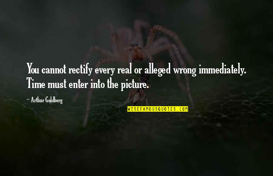 Immediately Quotes By Arthur Goldberg: You cannot rectify every real or alleged wrong