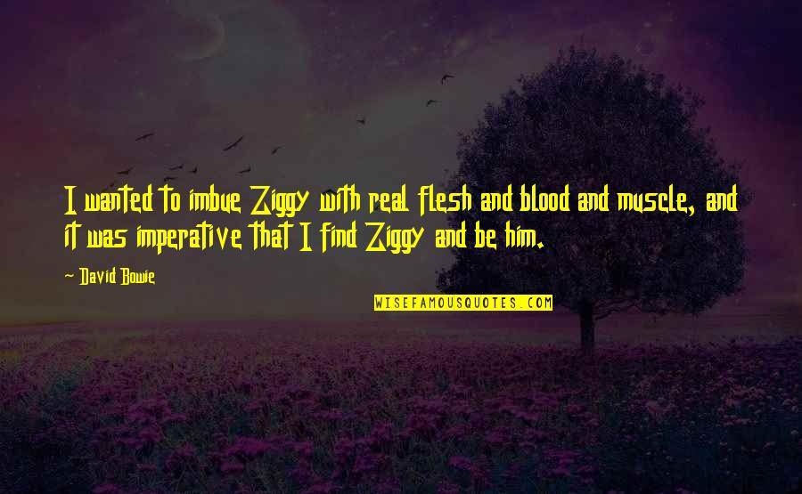 Imperative Quotes By David Bowie: I wanted to imbue Ziggy with real flesh