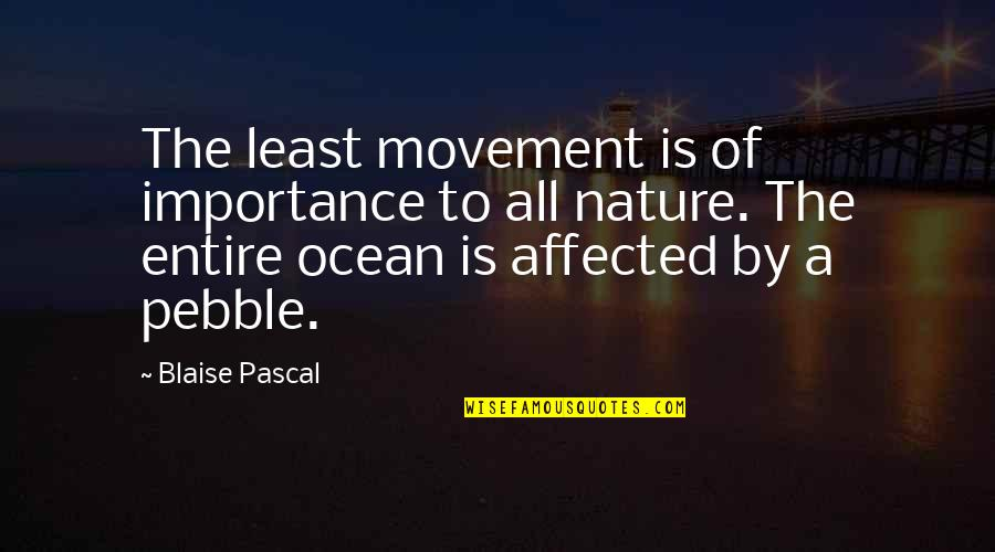 Importance Of Nature Quotes By Blaise Pascal: The least movement is of importance to all