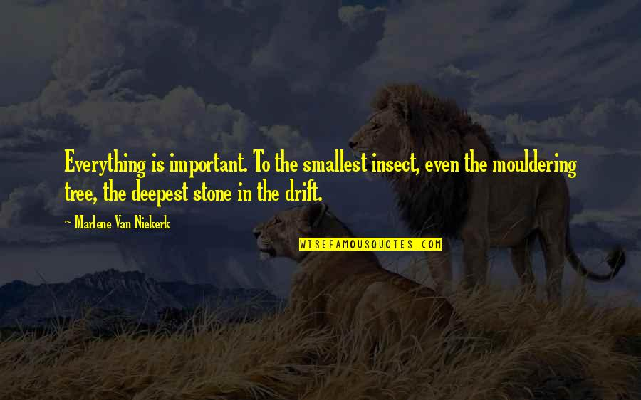 Importance Of Nature Quotes By Marlene Van Niekerk: Everything is important. To the smallest insect, even