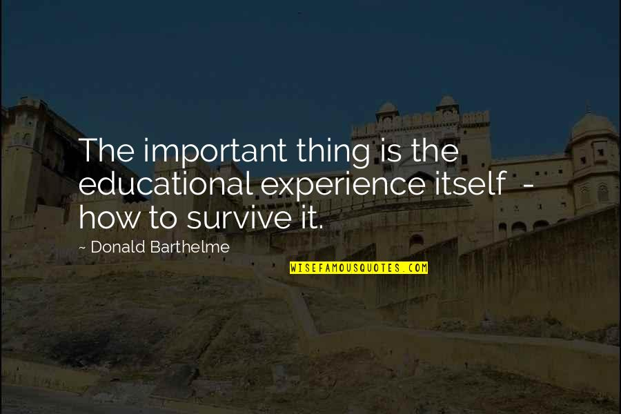 Important Things Quotes By Donald Barthelme: The important thing is the educational experience itself