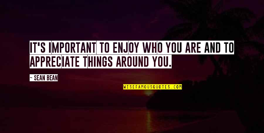 Important Things Quotes By Sean Bean: It's important to enjoy who you are and
