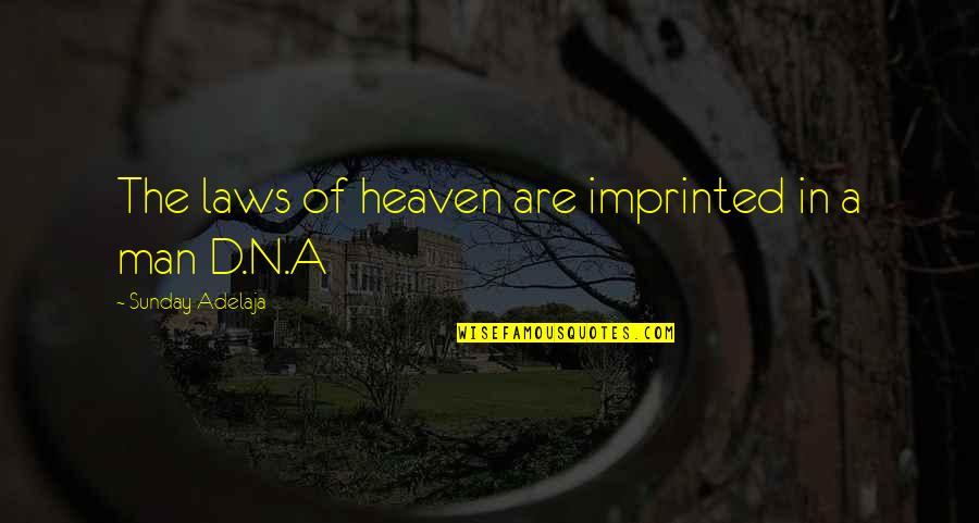 Imprinted Quotes By Sunday Adelaja: The laws of heaven are imprinted in a