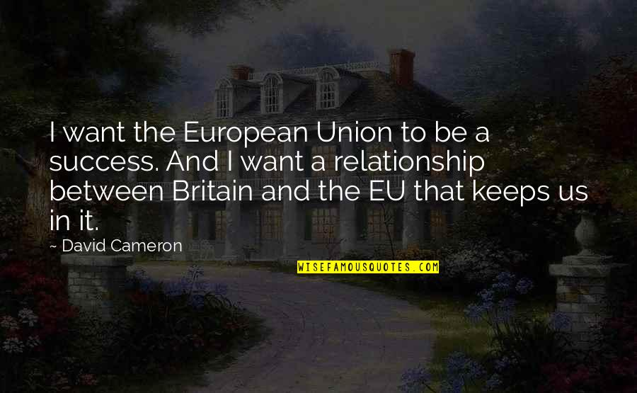 In A Relationship Quotes By David Cameron: I want the European Union to be a