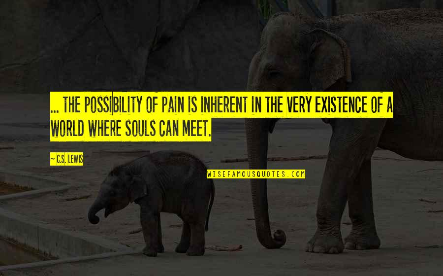 In A World Where Quotes By C.S. Lewis: ... the possibility of pain is inherent in
