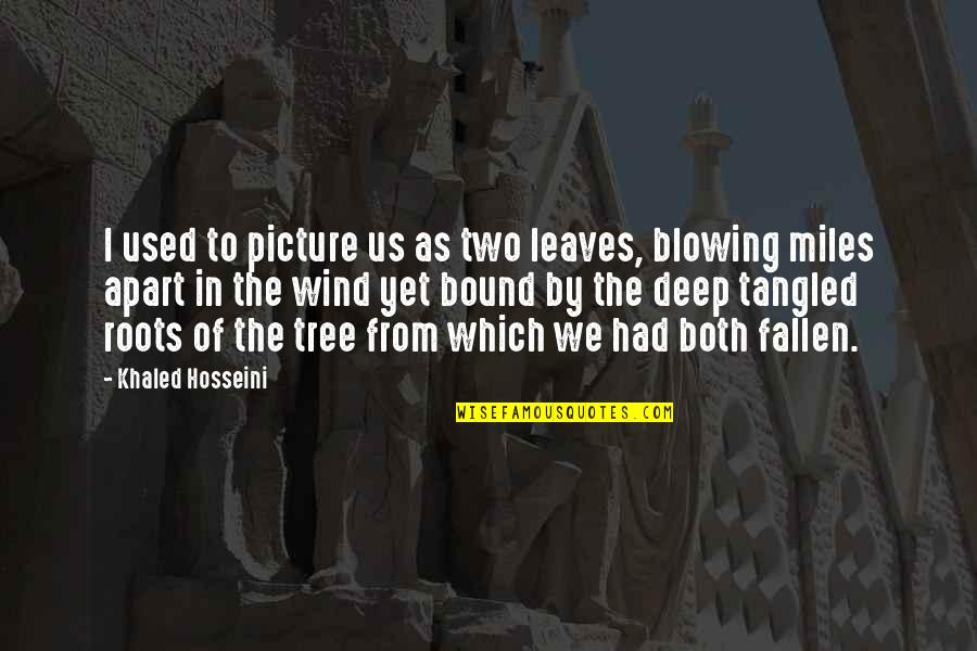 In Deep Quotes By Khaled Hosseini: I used to picture us as two leaves,