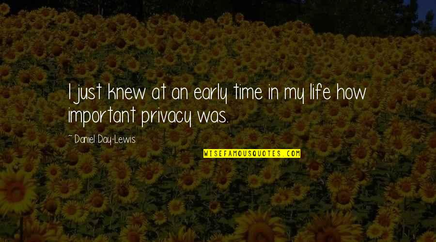 In My Day Quotes By Daniel Day-Lewis: I just knew at an early time in